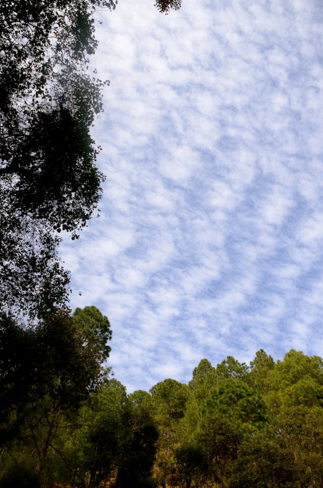 Sky gazing at Ramgarh and surrounds (3/6)