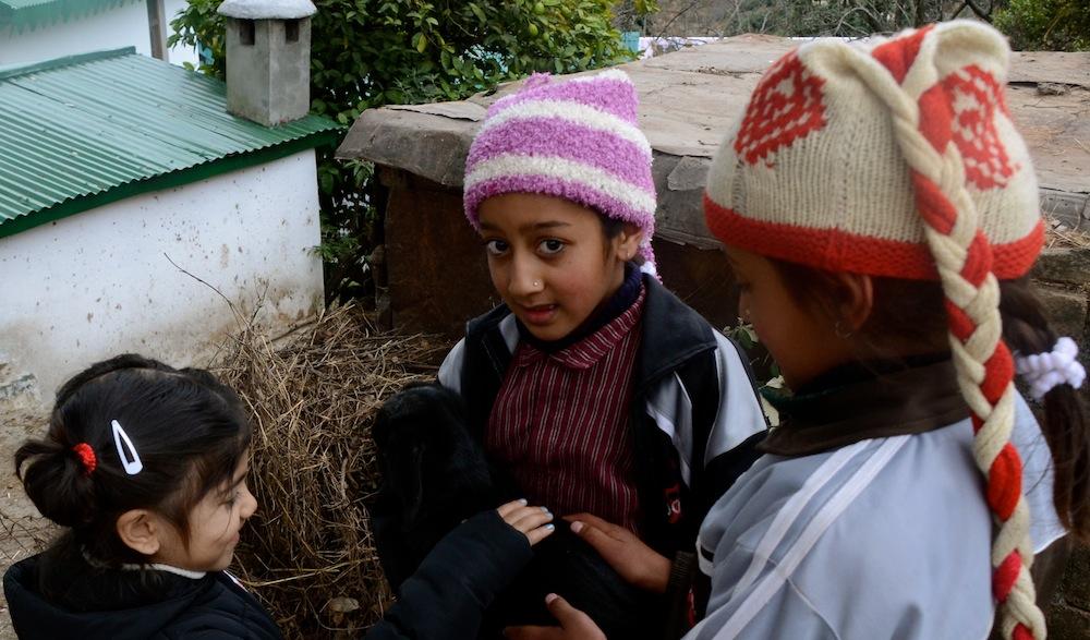 Portraits from Ramgarh and Nainital (3/6)