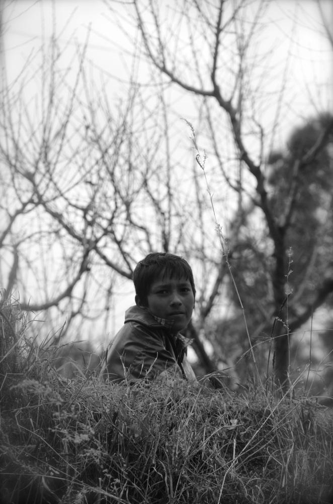 Portraits from Ramgarh and Nainital (5/6)