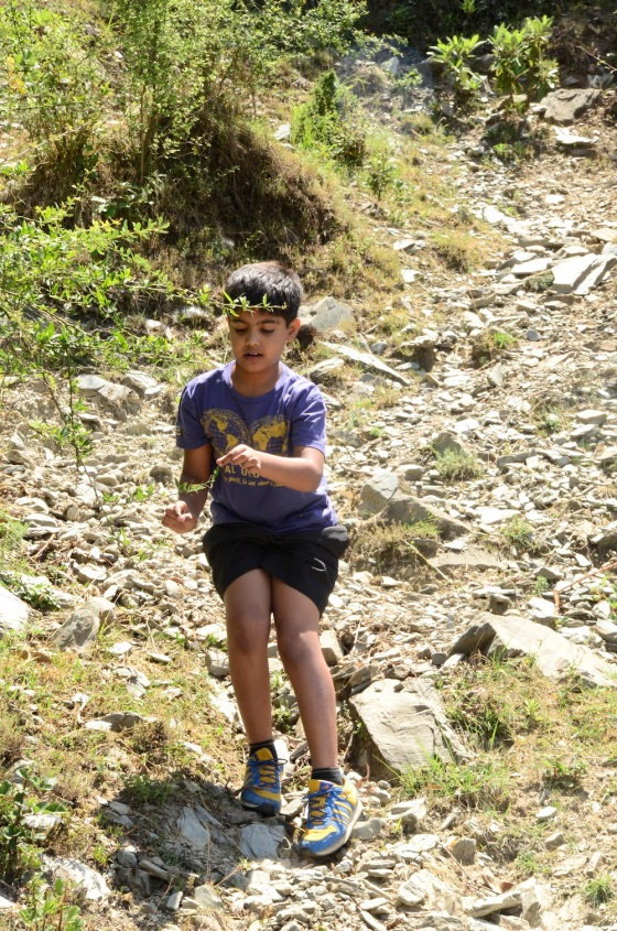 Udai was navigator, happy to do extra climbs to check out if we were on the right path. Proud to say he is turning out to be one sure footed trekking enthusiast!