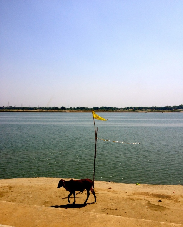 The Narmada at Bharuch, an impromptu stop that clicked!