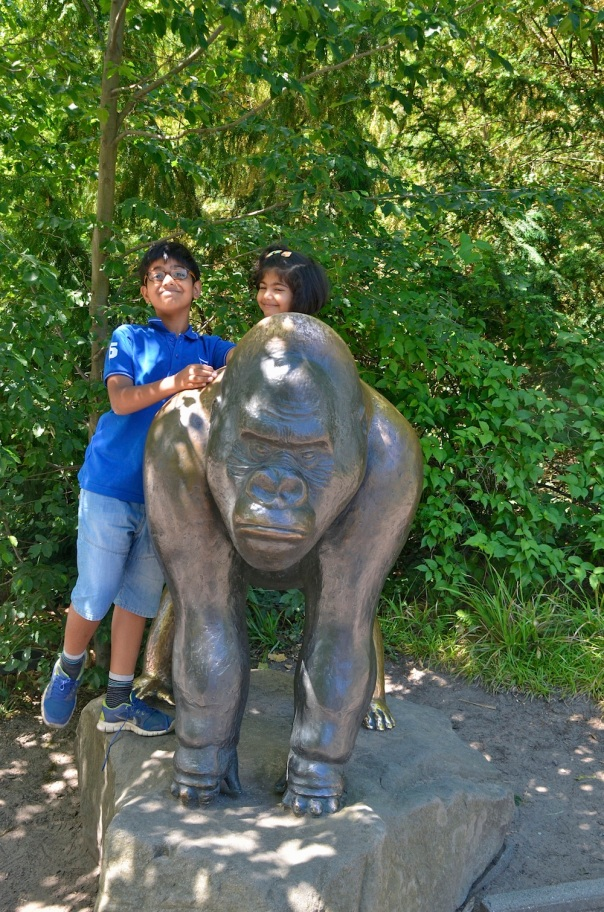 The gorillas only showed us their backs, so the kids climbed all over this one!